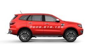 ford-everest-2018-2019-mau-do-muaxegiatot-vn