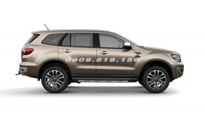 ford-everest-2018-2019-mau-ghi-vang-muaxegiatot-vn